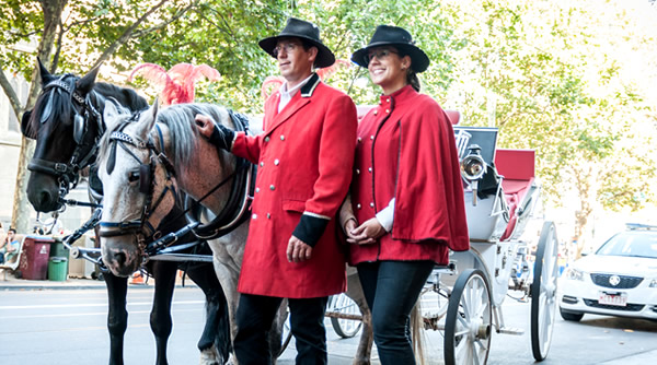 Our Horse & Carriage Drivers